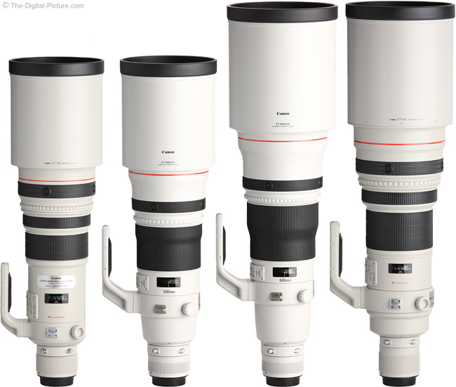 Canon-500mm-600mm-Super-Telephoto-Lens-Comparison-with-Hoods by .